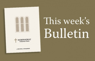 Bulletin WebSquare6